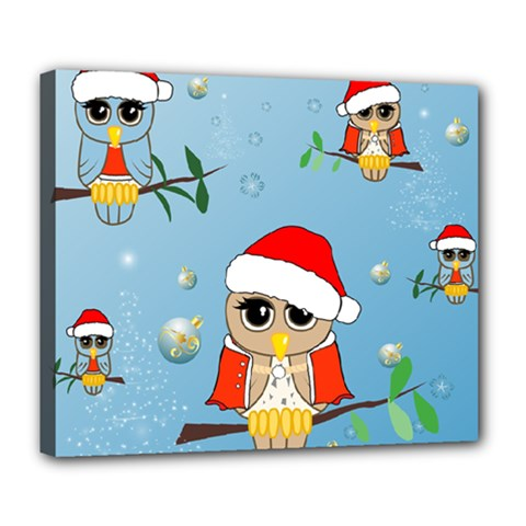 Funny, Cute Christmas Owls With Snowflakes Deluxe Canvas 24  X 20   by FantasyWorld7