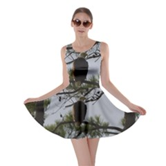 Bald Eagle 4 Skater Dresses