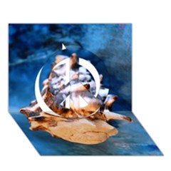 Sea Shell Spiral Peace Sign 3d Greeting Card (7x5)