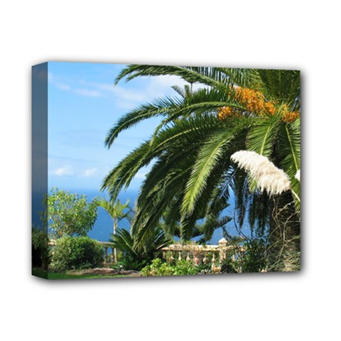 Sunny Tenerife Deluxe Canvas 14  X 11  by MoreColorsinLife