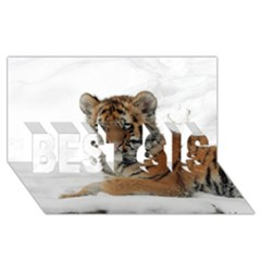 Tiger 2015 0101 Best Sis 3d Greeting Card (8x4)  by JAMFoto