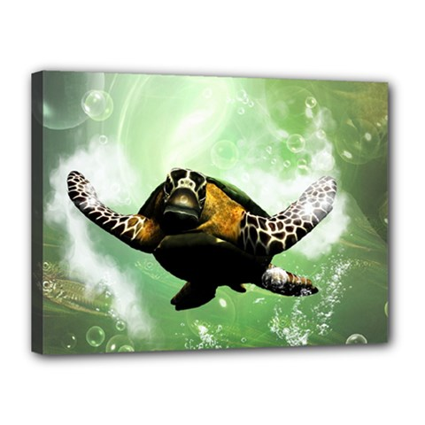 Beautiful Seaturtle With Bubbles Canvas 16  x 12