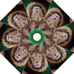 Lion Straight Umbrellas by ArtByThree
