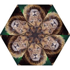 Lion Mini Folding Umbrellas by ArtByThree