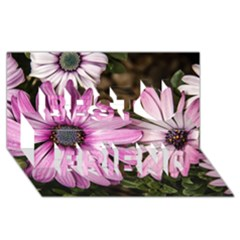 Beautiful Colourful African Daisies  Best Friends 3d Greeting Card (8x4)  by OZMedia