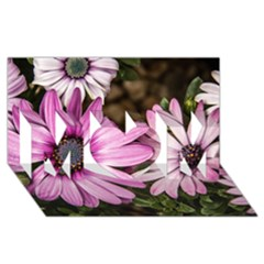 Beautiful Colourful African Daisies  Mom 3d Greeting Card (8x4)  by OZMedia