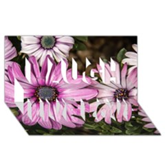 Beautiful Colourful African Daisies  Laugh Live Love 3d Greeting Card (8x4)  by OZMedia
