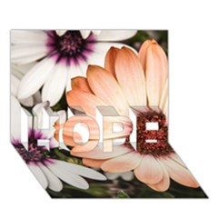 Beautiful Colourful African Daisies Hope 3d Greeting Card (7x5)  by OZMedia