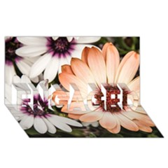 Beautiful Colourful African Daisies Engaged 3d Greeting Card (8x4)  by OZMedia