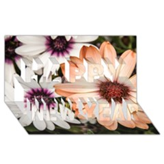 Beautiful Colourful African Daisies Happy New Year 3d Greeting Card (8x4)  by OZMedia
