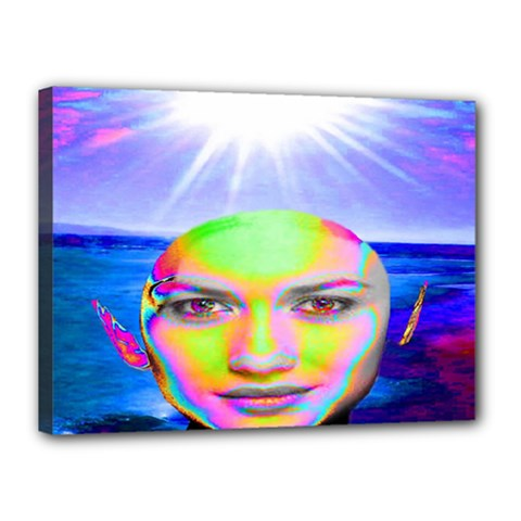Sunshine Illumination Canvas 16  X 12  by icarusismartdesigns