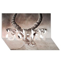 Antelope Horns Sorry 3d Greeting Card (8x4)  by TwoFriendsGallery