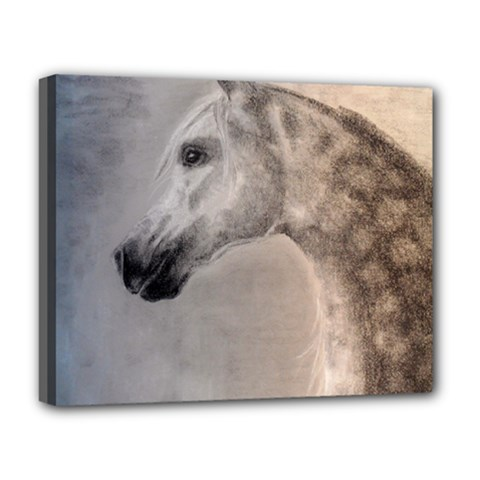 Grey Arabian Horse Deluxe Canvas 20  X 16   by TwoFriendsGallery