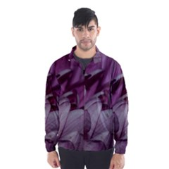 Purple! Wind Breaker (men)