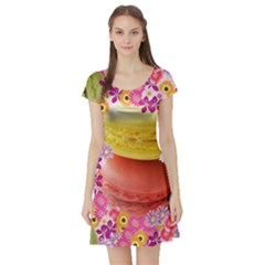 Macaroons And Floral Delights Short Sleeve Skater Dresses by LovelyDesigns4U