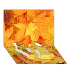 Yellow Maple Leaves Love Bottom 3d Greeting Card (7x5)  by trendistuff