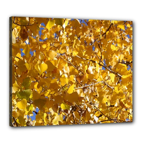 Yellow Leaves Canvas 24  X 20  by trendistuff