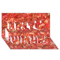 Red Maple Leaves Best Wish 3d Greeting Card (8x4)