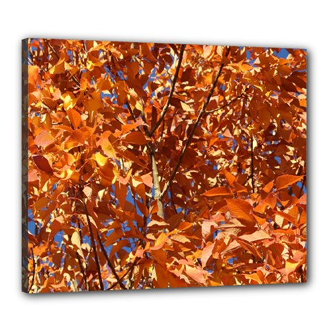 Orange Leaves Canvas 24  X 20  by trendistuff