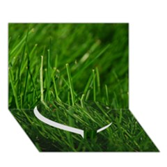 Green Grass 1 Heart Bottom 3d Greeting Card (7x5)