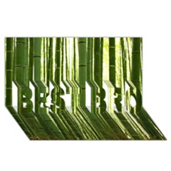 Bamboo Grove 2 Best Bro 3d Greeting Card (8x4)