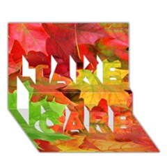 Autumn Leaves 1 Take Care 3d Greeting Card (7x5)  by trendistuff