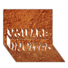 Orange Clay Dirt You Are Invited 3d Greeting Card (7x5)  by trendistuff