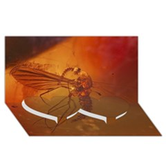 Mosquito In Amber Twin Heart Bottom 3d Greeting Card (8x4)