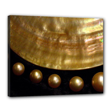Golden Pearls Canvas 20  X 16  by trendistuff