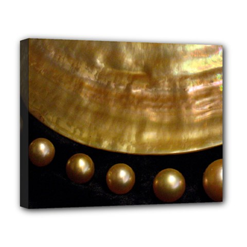 Golden Pearls Deluxe Canvas 20  X 16   by trendistuff