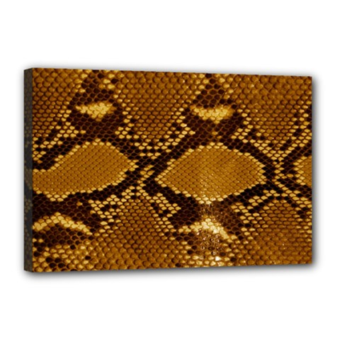 Snake Skin Canvas 18  X 12  by trendistuff