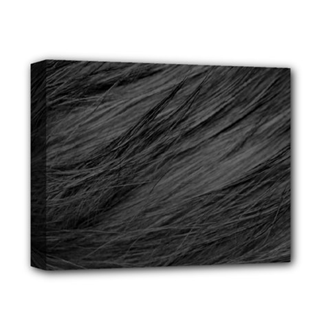 Long Haired Black Cat Fur Deluxe Canvas 14  X 11  by trendistuff
