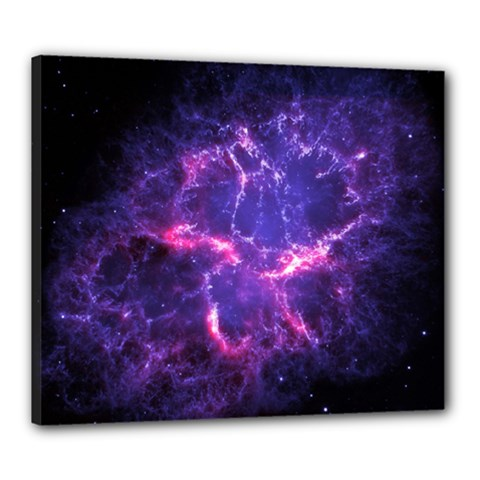 Pia17563 Canvas 24  X 20  by trendistuff