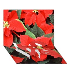 Poinsettia Love Bottom 3d Greeting Card (7x5)  by trendistuff