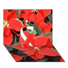 Poinsettia Ribbon 3d Greeting Card (7x5)  by trendistuff