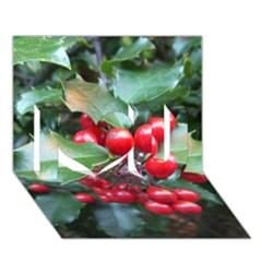 Holly 1 I Love You 3d Greeting Card (7x5)  by trendistuff