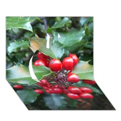 Holly 1 Apple 3d Greeting Card (7x5)  by trendistuff