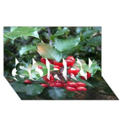 Holly 1 Sorry 3d Greeting Card (8x4)  by trendistuff