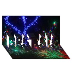 Christmas Lights 2 Best Sis 3d Greeting Card (8x4)  by trendistuff