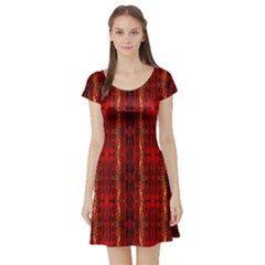 Red Gold, Old Oriental Pattern Short Sleeve Skater Dresses by Costasonlineshop