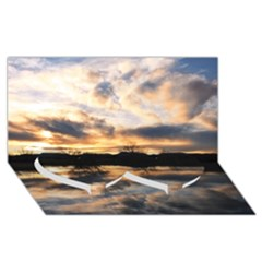 Sun Reflected On Lake Twin Heart Bottom 3d Greeting Card (8x4)  by trendistuff