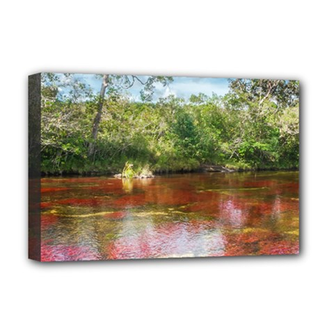 Cano Cristales 3 Deluxe Canvas 18  X 12   by trendistuff