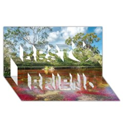 Cano Cristales 3 Best Friends 3d Greeting Card (8x4)  by trendistuff