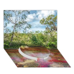 Cano Cristales 3 Circle Bottom 3d Greeting Card (7x5)  by trendistuff