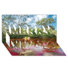 Cano Cristales 3 Merry Xmas 3d Greeting Card (8x4)  by trendistuff