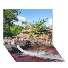 Cano Cristales 2 Circle Bottom 3d Greeting Card (7x5)  by trendistuff