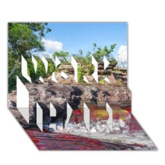 Cano Cristales 2 Work Hard 3d Greeting Card (7x5)  by trendistuff