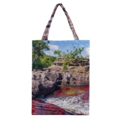 Cano Cristales 2 Classic Tote Bags by trendistuff