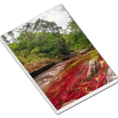 Cano Cristales 1 Large Memo Pads by trendistuff