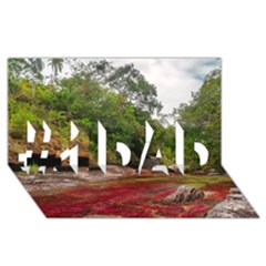 Cano Cristales 1 #1 Dad 3d Greeting Card (8x4)  by trendistuff